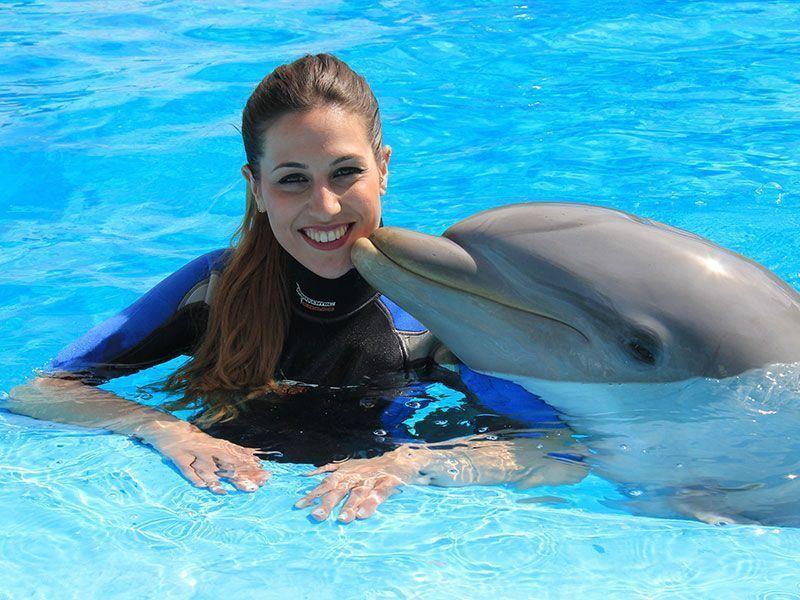 swim with Dolphins at Mundomar