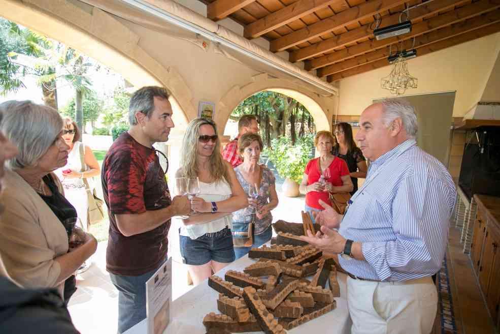 Mendoza wijnmakerij in alfas del pi