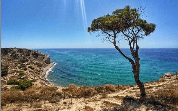 Cala mallaeta à la vila, une plage nudiste traditionnelle.