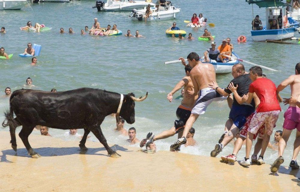 Bous a la mar, fiestas populares
