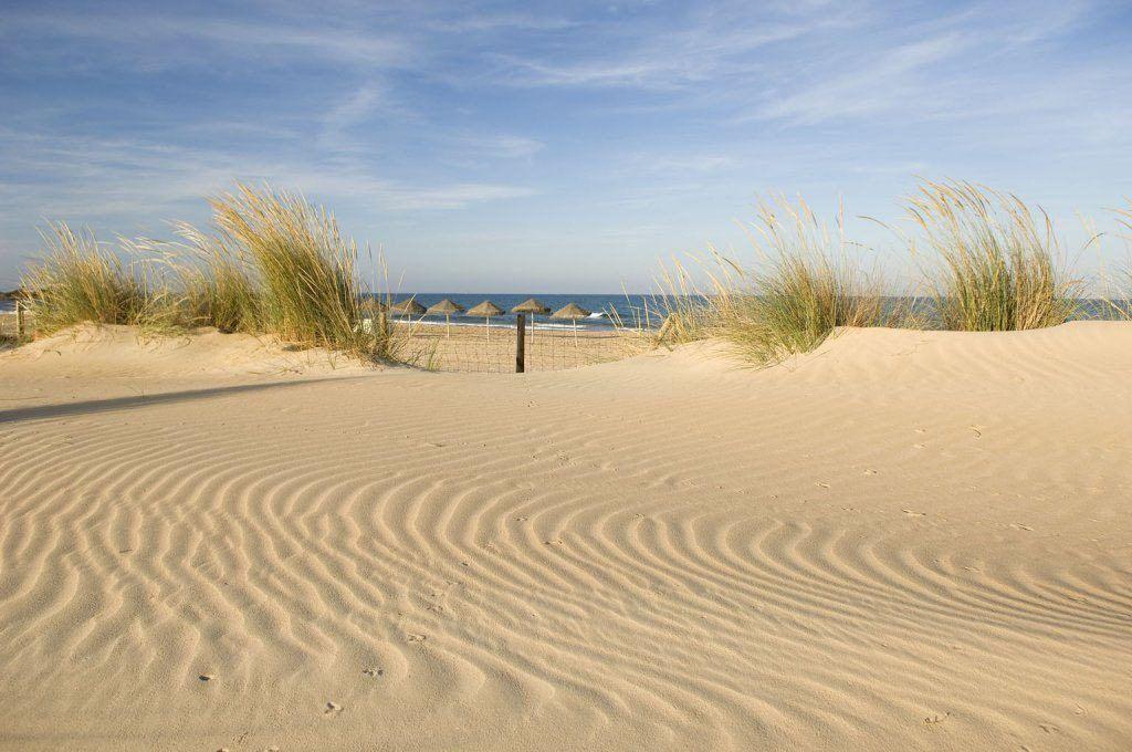 Sanddyner på kysten av byen guardamar del segura, i alicante
