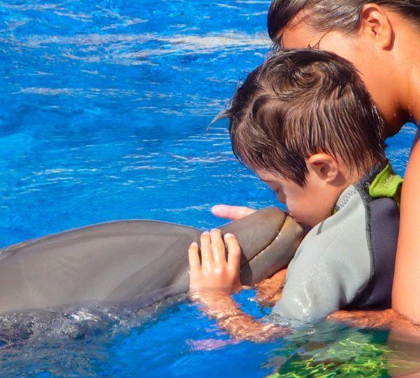 Fundación mundomar - delfinoterapia