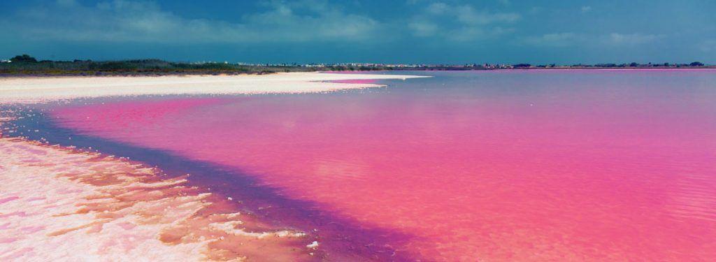 Laguna rosa di torrevieja