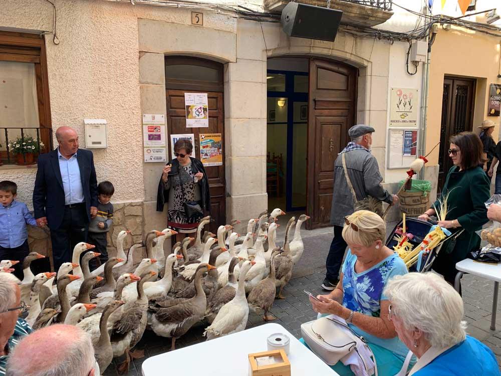 Ocas nel mercato di finestrat